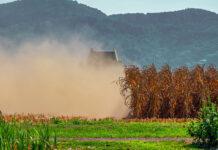 Wybieranie środków do ochrony roślin
